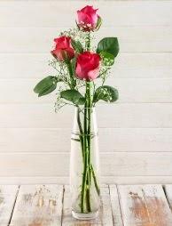 Cam içerisinde 3 kırmızı gül  Sinop internetten çiçek satışı