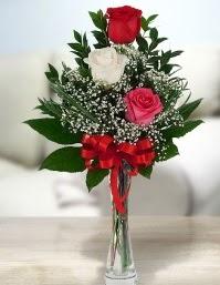 Camda 2 kırmızı 1 beyaz gül  Sinop internetten çiçek siparişi