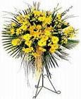 Sinop çiçek gönderme  Sari kazablanka Ferforje