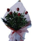 Sinop online çiçek gönderme sipariş  5 adet kirmizi güllerden buket