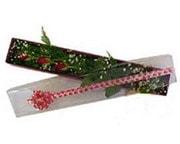 Sinop çiçek siparişi vermek  3 adet gül.kutu yaldizlidir.