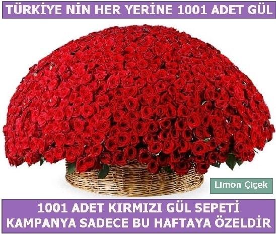1001 Adet kırmızı gül Bu haftaya özel  Sinop çiçek , çiçekçi , çiçekçilik