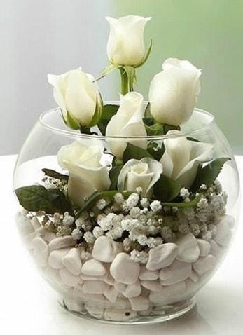 Beyaz Mutluluk 9 beyaz gül fanusta  Sinop cicek , cicekci