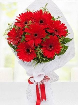 Kırmızı Gelbera Buketi  Sinop 14 şubat sevgililer günü çiçek