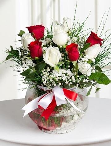 Aşk Küresi  5 beyaz 5 kırmızı gül fanusta  Sinop cicekciler , cicek siparisi