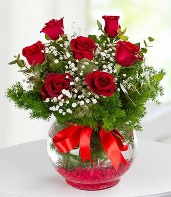 fanus Vazoda 7 Gül  Sinop çiçekçiler