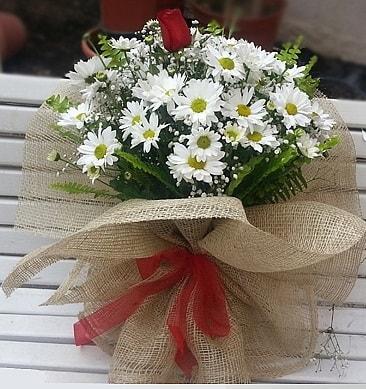 Papatya 1 adet kırmızı gül buketi  Sinop uluslararası çiçek gönderme