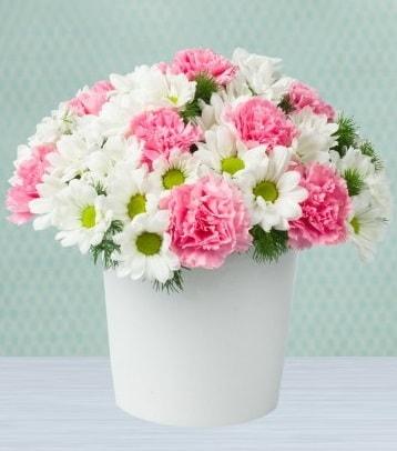 Seramik vazoda papatya ve kır çiçekleri  Sinop cicek , cicekci