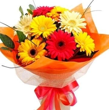 9 adet karışık gerbera buketi  Sinop çiçekçiler