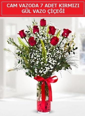 Cam vazoda 7 adet kırmızı gül çiçeği  Sinop ucuz çiçek gönder