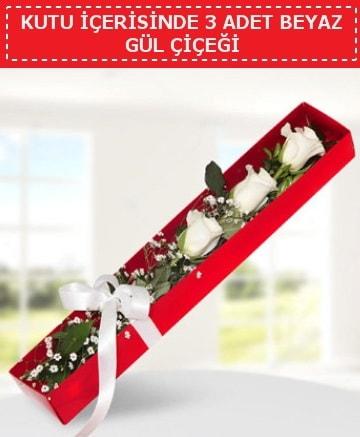 Kutu içerisinde 3 adet beyaz gül çiçeği  Sinop çiçek online çiçek siparişi