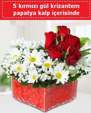 mika kalp içerisinde 5 kırmızı gül papatya  Sinop çiçekçi mağazası