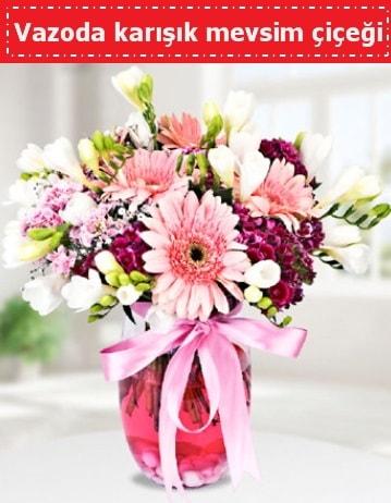 Vazoda karışık mevsim çiçeği  Sinop çiçekçiler