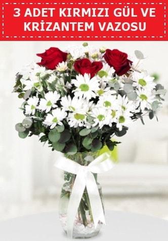 3 kırmızı gül ve camda krizantem çiçekleri  Sinop çiçekçi mağazası
