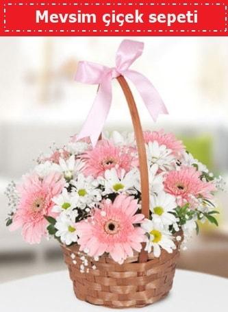 Mevsim kır çiçek sepeti  Sinop çiçekçiler