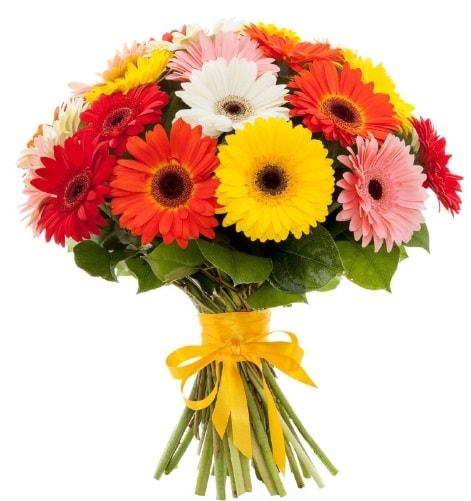 Gerbera demeti buketi  Sinop internetten çiçek satışı